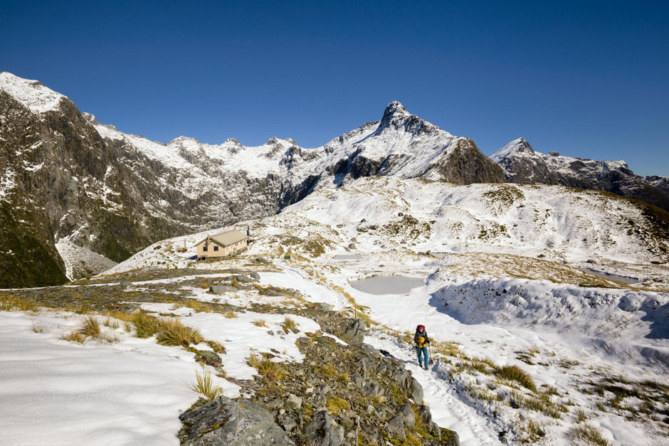 Mackinnon Shelter - Top backcountry huts in New Zealand