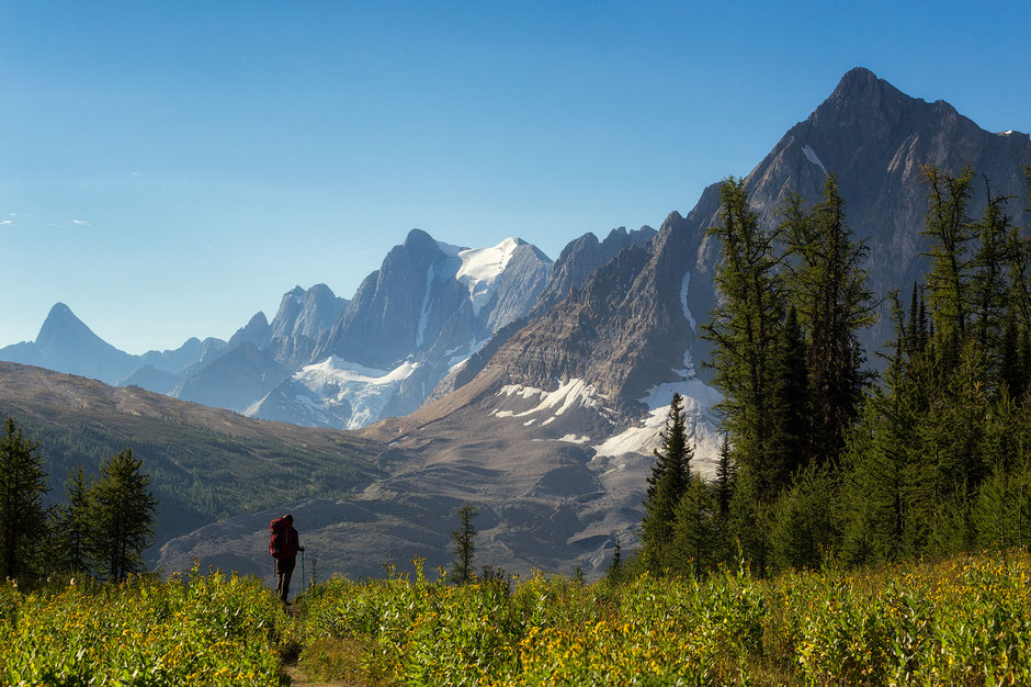 Rockwall Trail in Kootenay NAtional Park. Western Canada's Most Beautiful NAtional Parks.