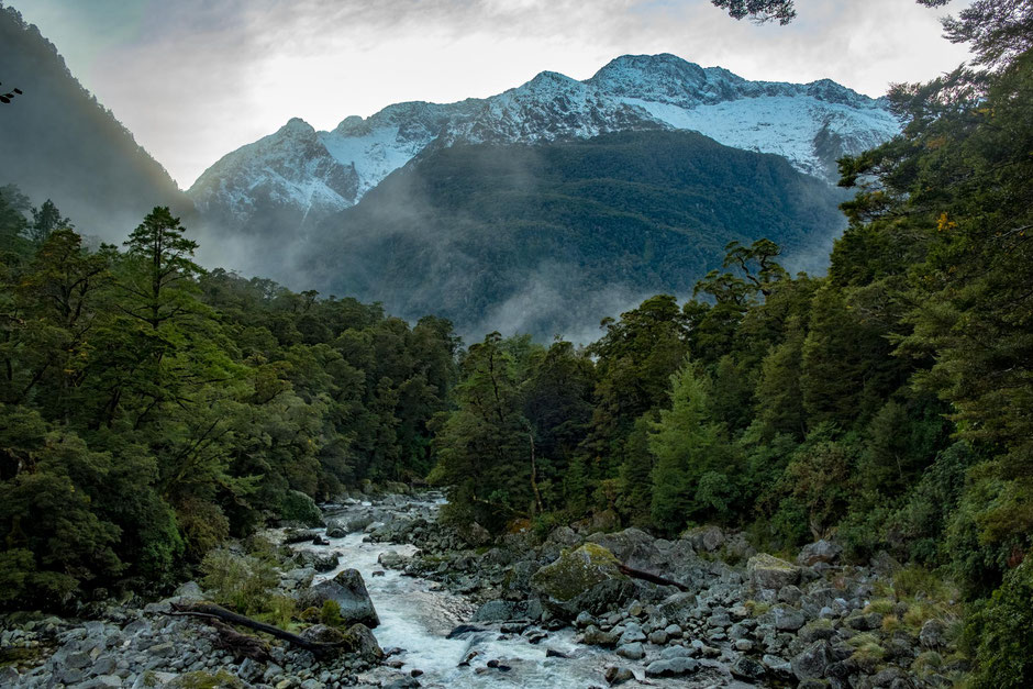 A viewpoint of the Clinton River -  The Milford Track Guide