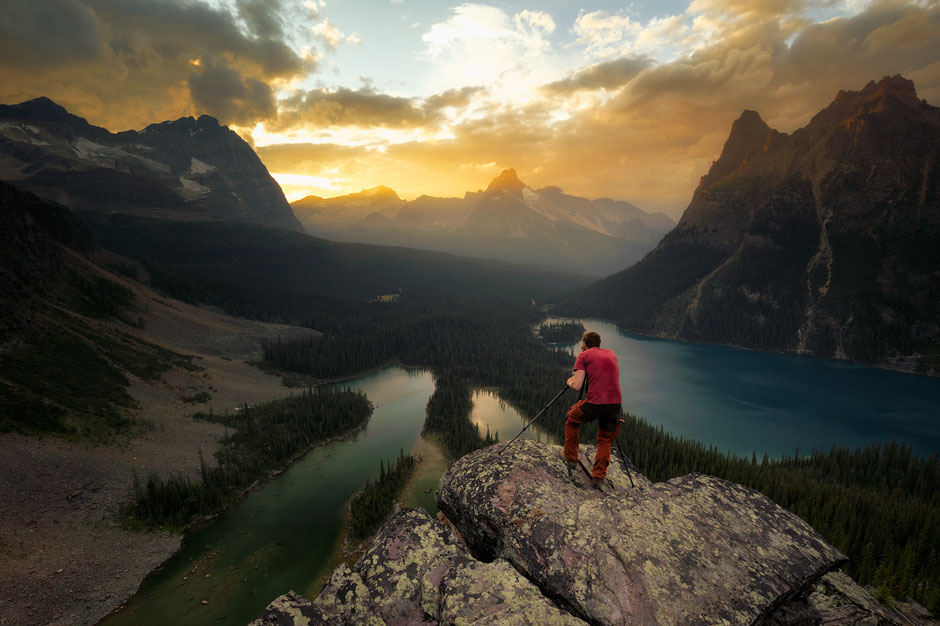 Lake O'hara from the Opabin Lookout.