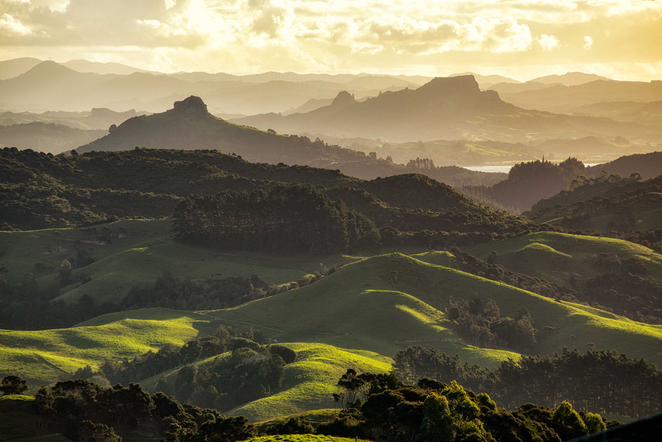 Tauranga Valley Lookout.