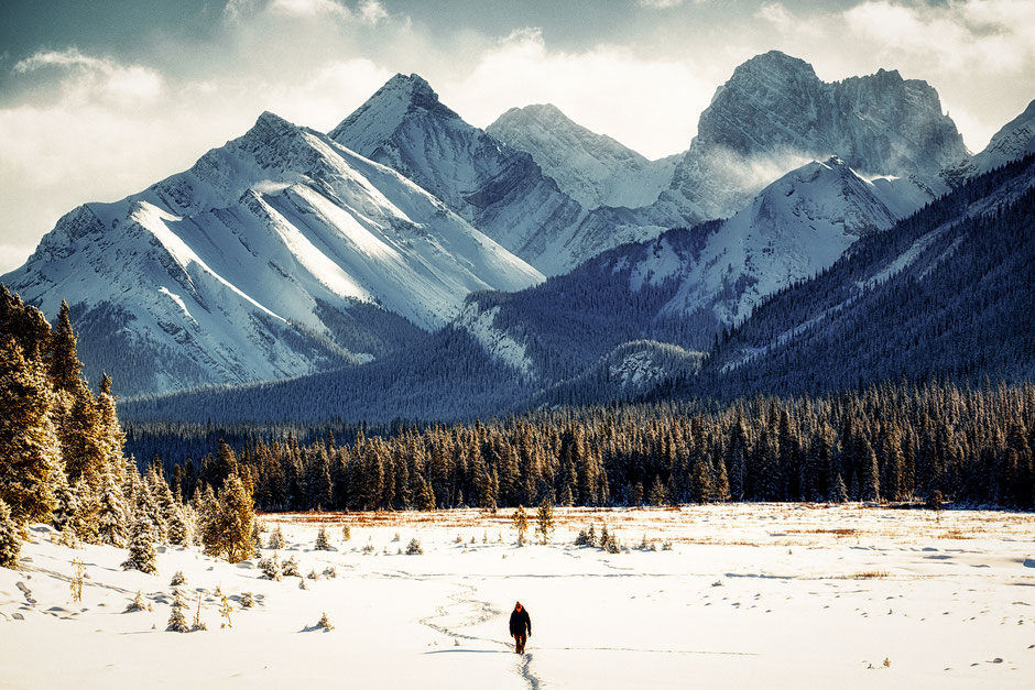 Moose Meadows in the winter. Kananaskis Country Photography Spots