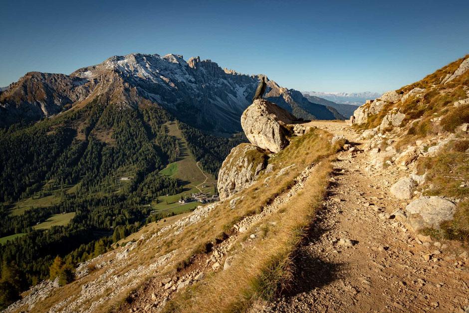 The trail between Rifugio Paulina and Rifugio Roda da Vael with the Latemar group in the background