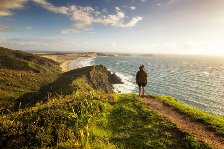 The Werahi Beach track, one of the best day hikes on the North Island of New Zealand