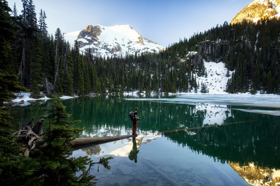 The famous submerged log at the Middle Joffre Lake