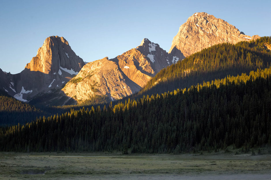 Moose Meadows near Mount Engadine Lodge at Sunrise. Best Photography Spots in Kananaskis Country