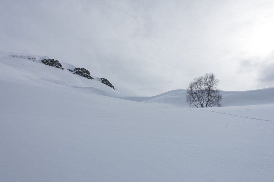 raquettes à neige dans la Meije