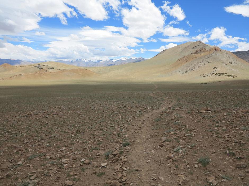 trek-ladakh-inde