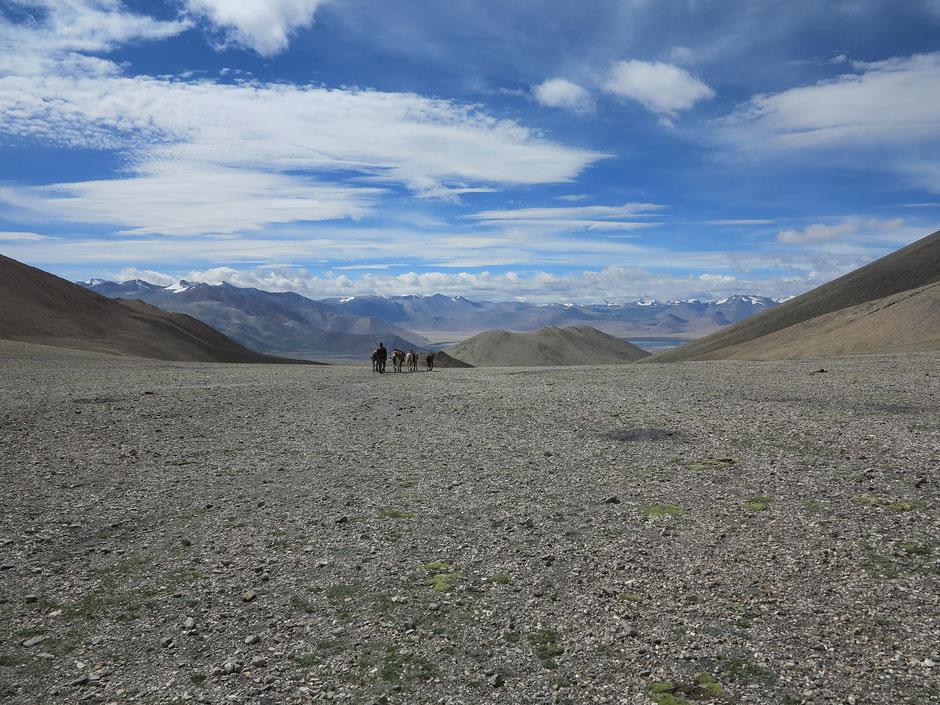 trek-ladakh