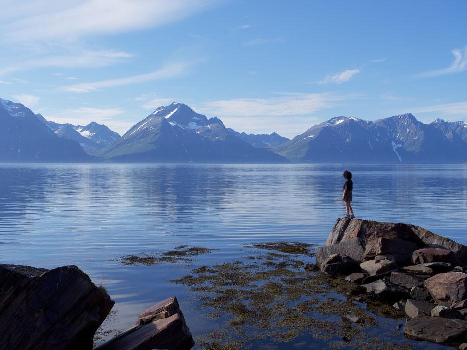 partir voir le cap nord en norvege
