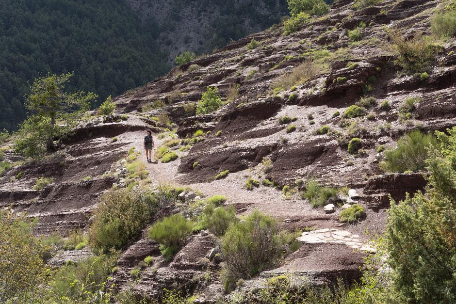 randonnée dans les gorges de daluis