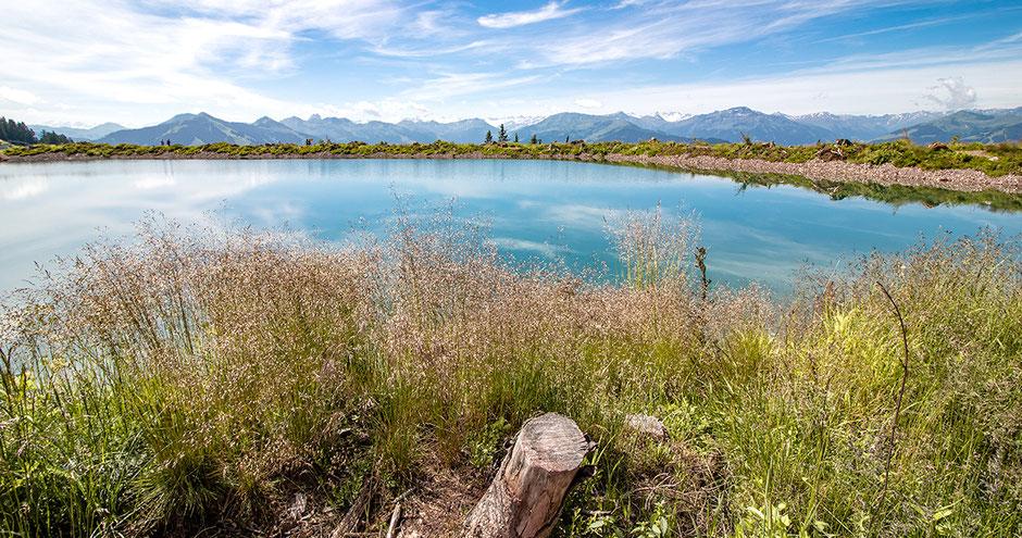 Wandern auf der Kleinen Salve, Speichersee, Bergsee, Tirol, Kitzbühler Alpen, Hohe Salve