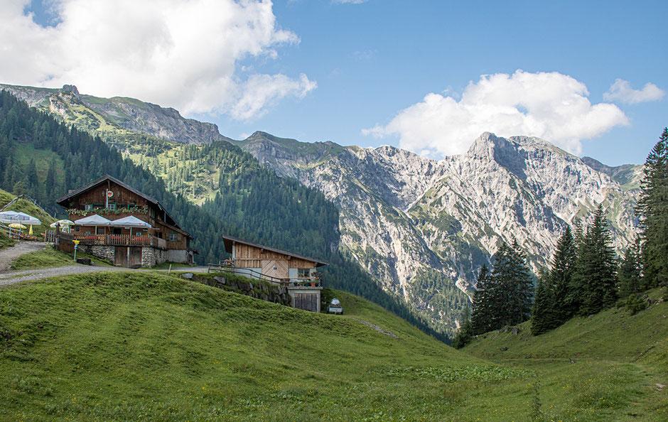 Zwölferkopf, Achensee, Wandern mit Hund, Urlaub mit Hund, Wandern in Tirol, Bergurlaub mit Hund, Bärenbadalm