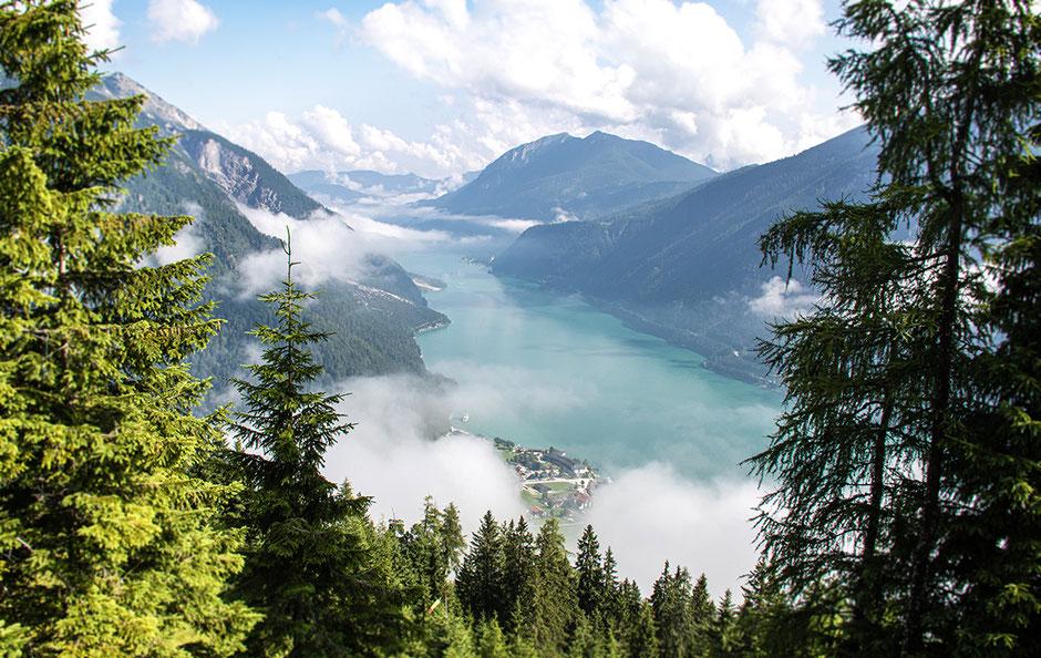 Zwölferkopf, Achensee, Wandern mit Hund, Urlaub mit Hund, Wandern in Tirol, Bergurlaub mit Hund, Tirol