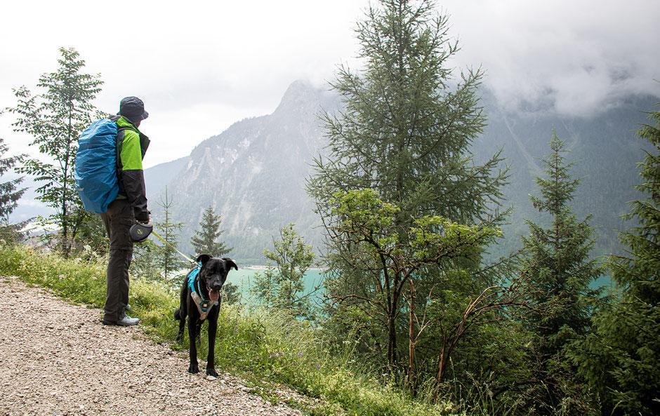 Urlaub mit Hund, Bergurlaub mit Hund, Urlaub in Tirol, Achensee, Dalfalzer Wasserfall