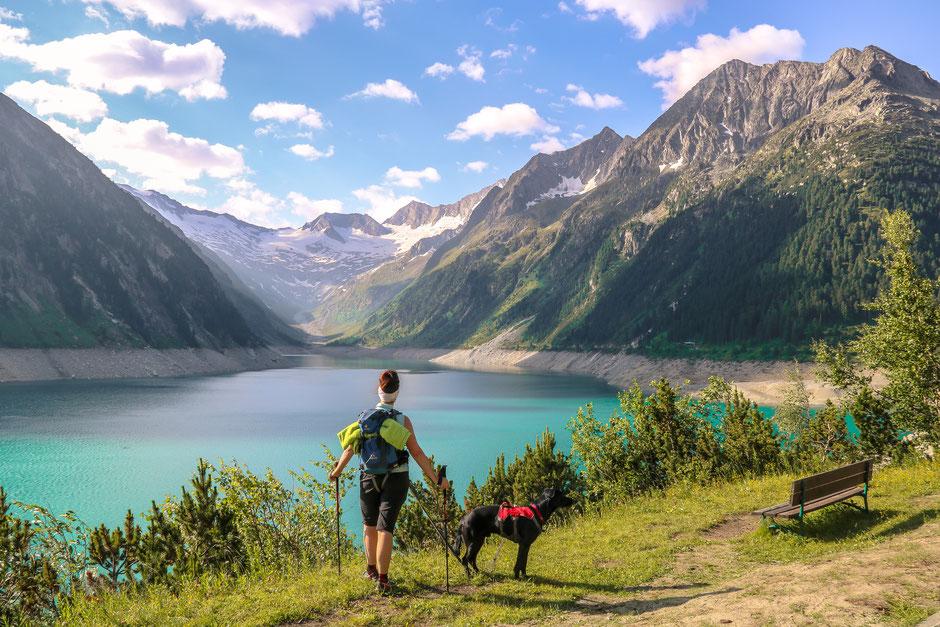 Schlegeisstausee Zillertal Olperer Bergurlaub mit Hund Urlaub mit Hund Wandern mit Hund