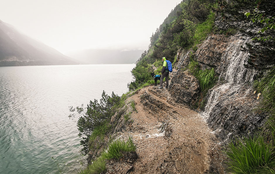 Wandern am Achensee, Wandern mit Hund, Urlaub in Tirol, Achensee, Bergurlaub mit Hund, Gaisalm, Uferweg Achensee, Urlaub mit Hund