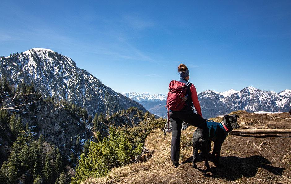Blick zum Jochberg, Karwendel, Herzogstand, Heimgarten, Kochelsee, Wandern mit Hund, Urlaub mit Hund, Bergurlaub mit Hund