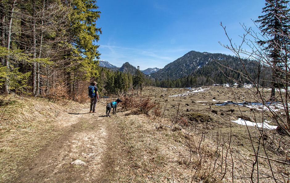 Wandern mit Hund, Urlaub mit Hund, Bergurlaub mit Hund, Sonnenspitze, Kochelsee