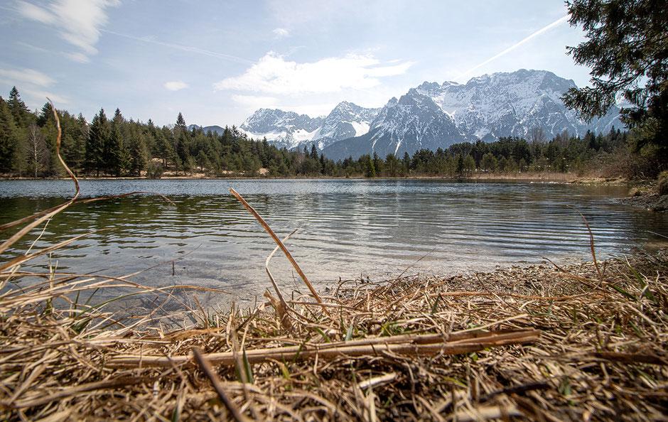 Urlaub mit Hund Berge, Bergurlaub mit Hund, Wandern mit Hund, Karwendel, Mittenwald
