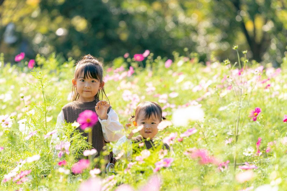家族で遊んでいる姿を自然な雰囲で撮影いたします。