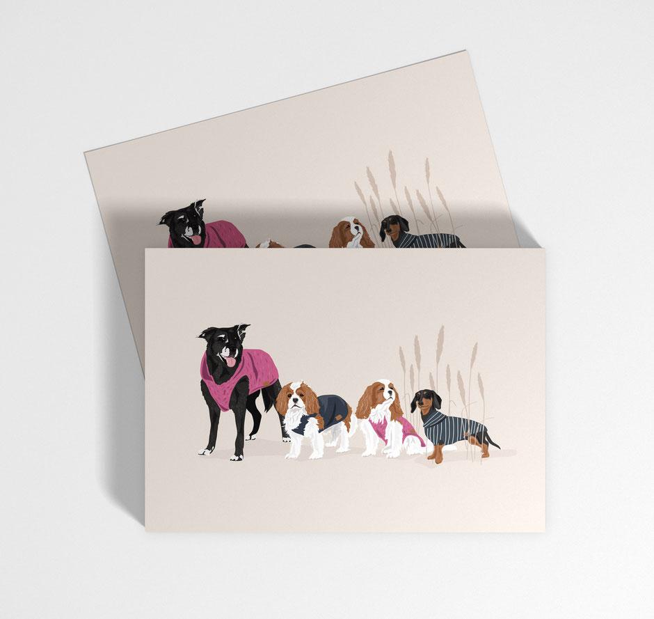 POSTCARD DESIGN for goldhund, düsseldorf
