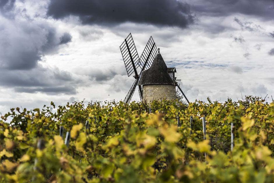 Le vin le plus prêt du ciel du Château Croix Beauséjour à Montagne Saint Emilion