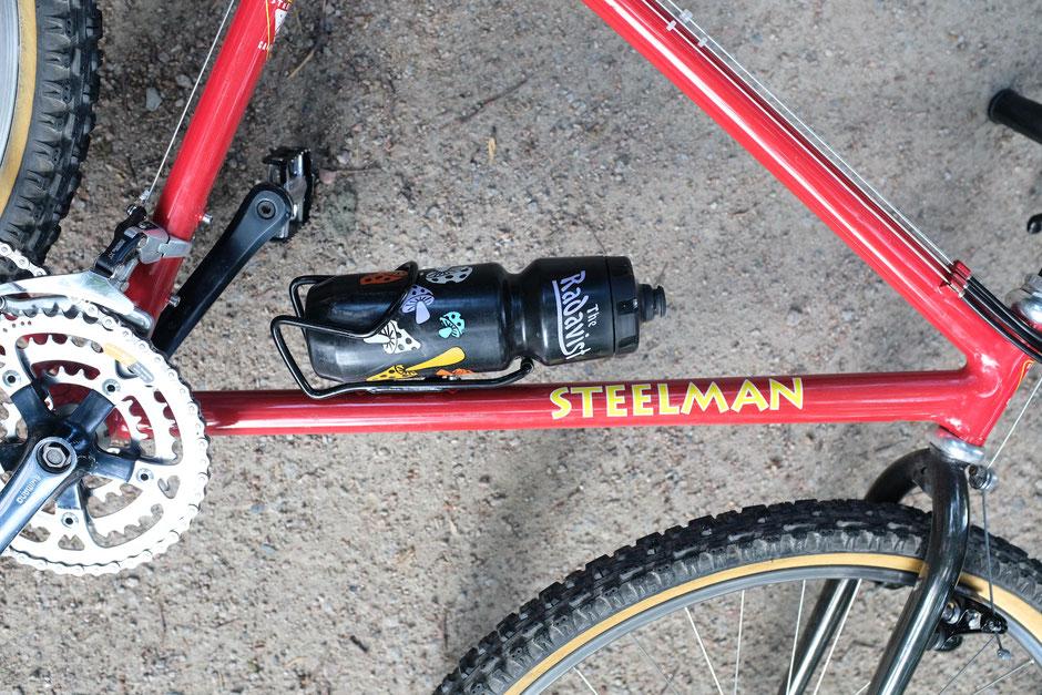 1993 Steelman El Gato