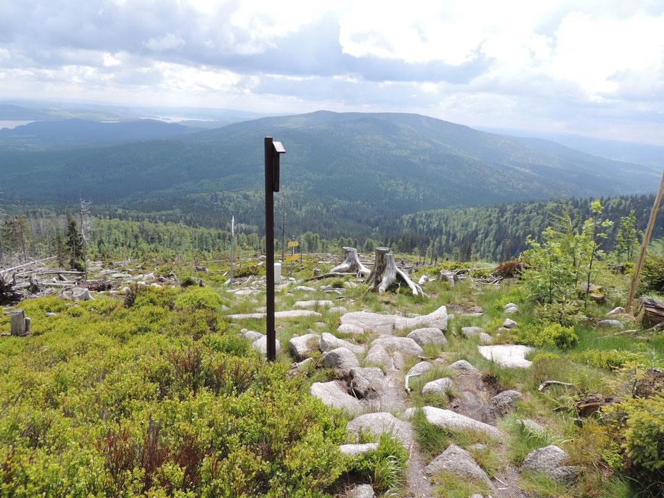 diese Etappe bringt Sie zu vier Gipfeln am Böhmerwaldkamm, alle über 1.000 Meter hoch