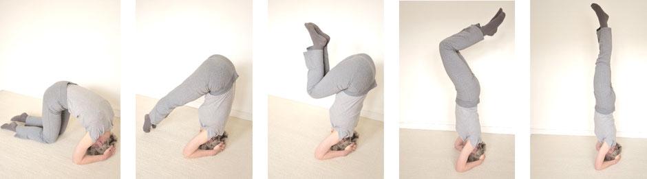 Sirshasana - posture de Yoga sur la tête - étapes