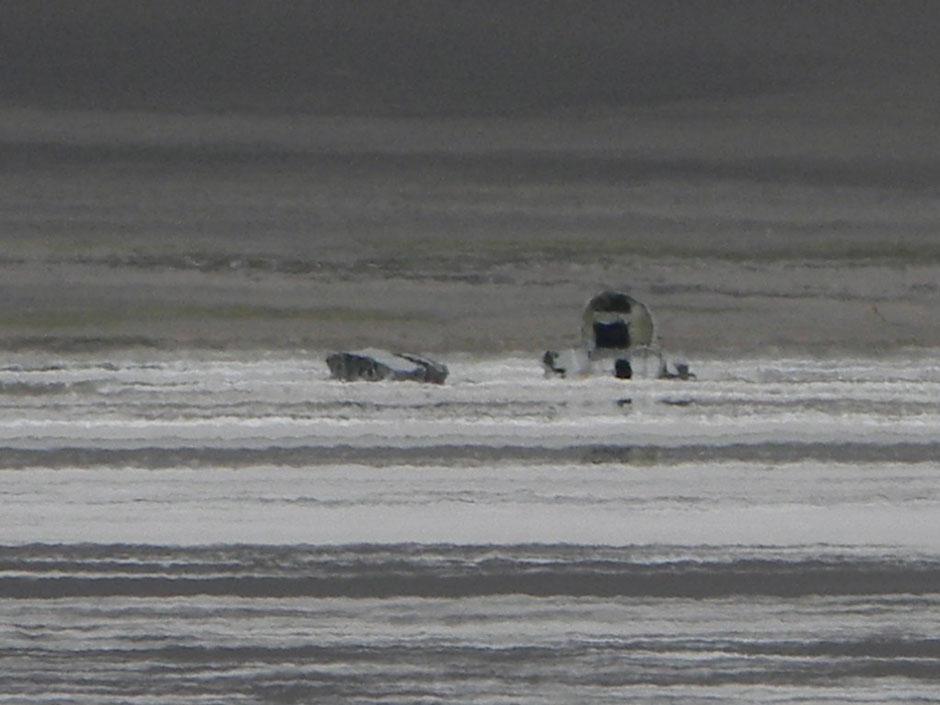 Foto del fuselaje y parte del ala.