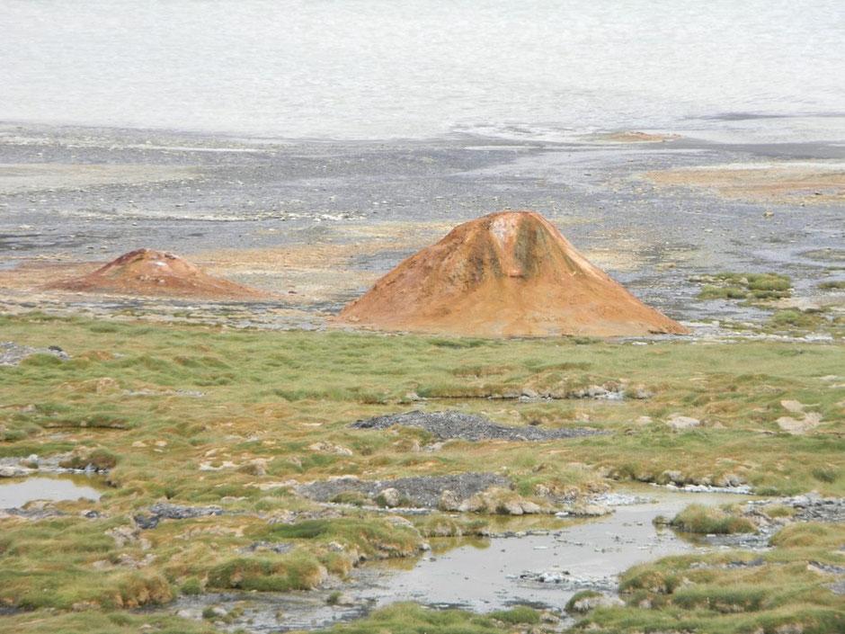 Géisers en Laguna Brava