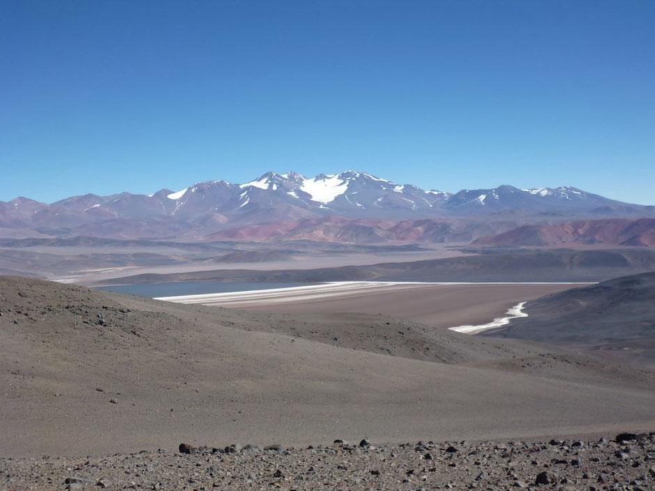 Laguna Negra ,de fondo el volcan Pissis