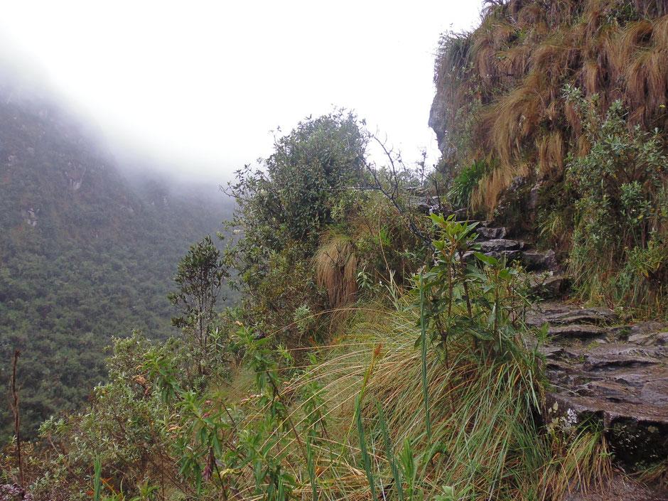 el camino es angosto, las piedras están mojadas, hay que subir con mucha precaución.