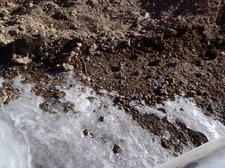 Cerca de los 4200 mt aparecen manchones de hielo.