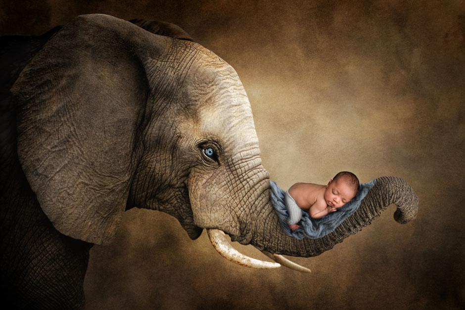 meilleur photographe bébé du Var région PACA