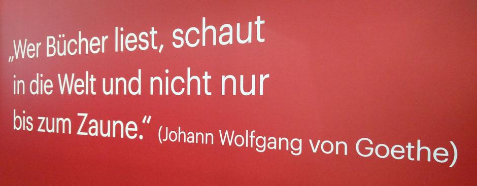 """Johann Wolfgang von Goethe (28. 08. 1749 - 22. 03. 1832), geboren in Frankfurt/Main, Naturforscher und einer der bedeutendsten deutschen Dichter stellt treffend fest: """"Wer Bücher liest, schaut in die Welt und nicht nur bis zum Zaune."""""""