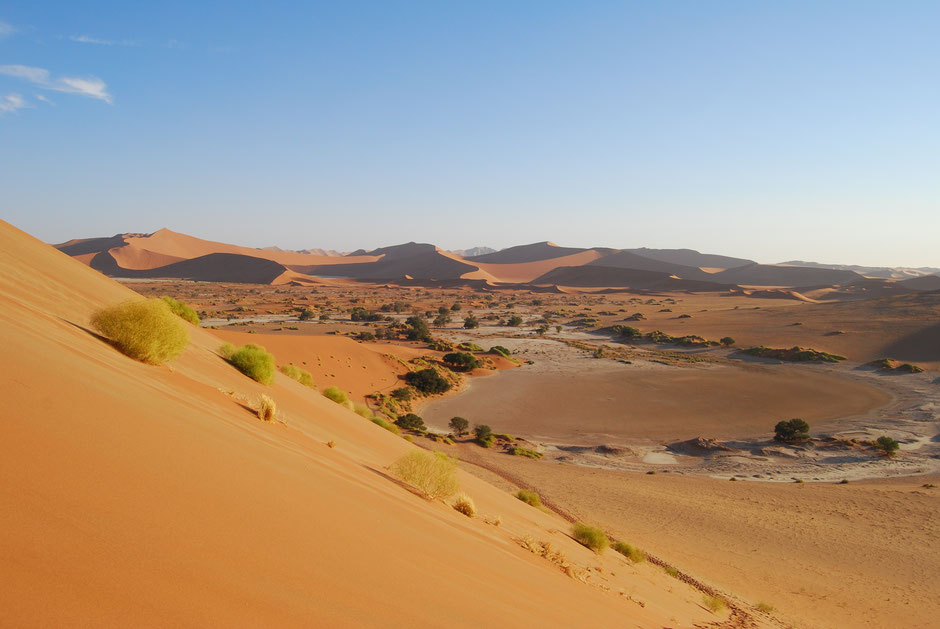 Namibia ganz lecker - kulinarischer Rodatrip