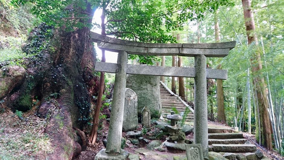 九州 福岡県糸島市のサイクリングコース、大田神社 Rural cycling course / biking route in countryside,  Itoshima, Fukuoka, JAPAN