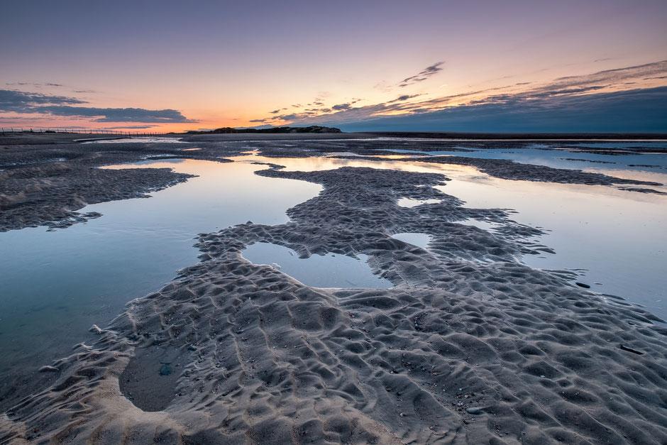 Natuurgebied het Zwin Zeeuws Vlaanderen