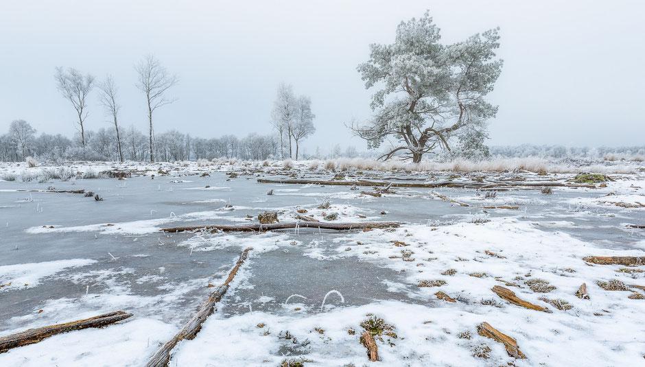 Winter op het Balloerveld © Jurjen Veerman