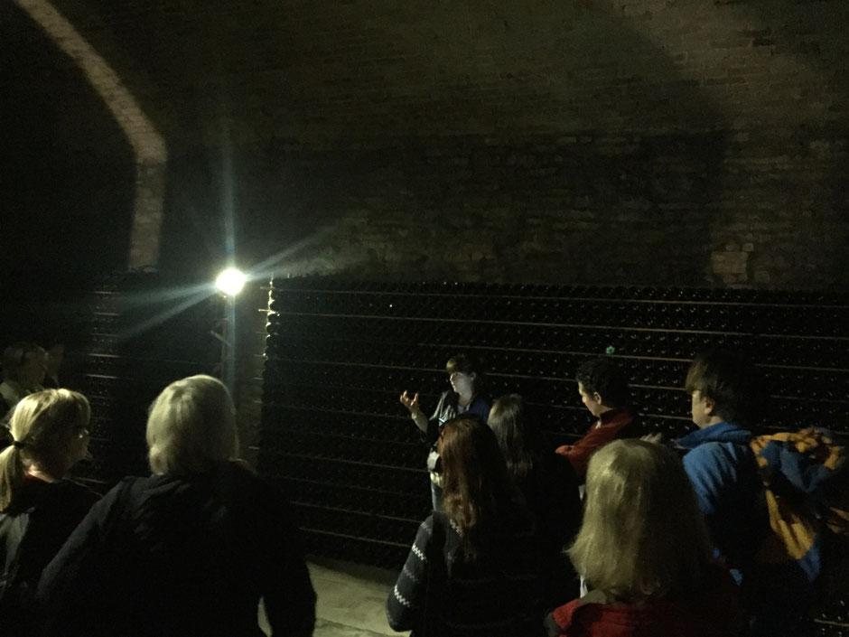 世界遺産の地下セーラーを所有するCanelli 村のBOSCA社のワインセーラーツアー