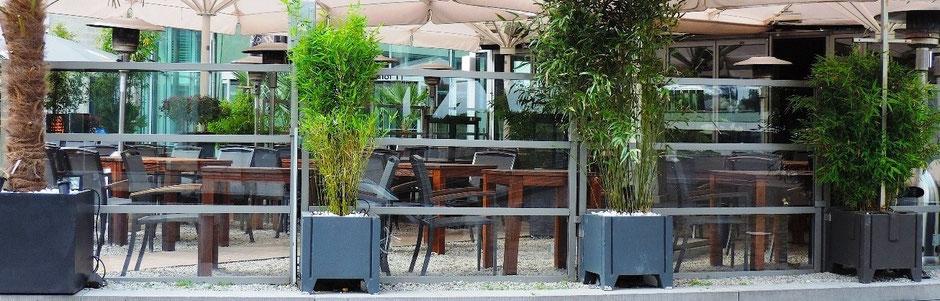 Windschutz  Gastronomie Terrasse