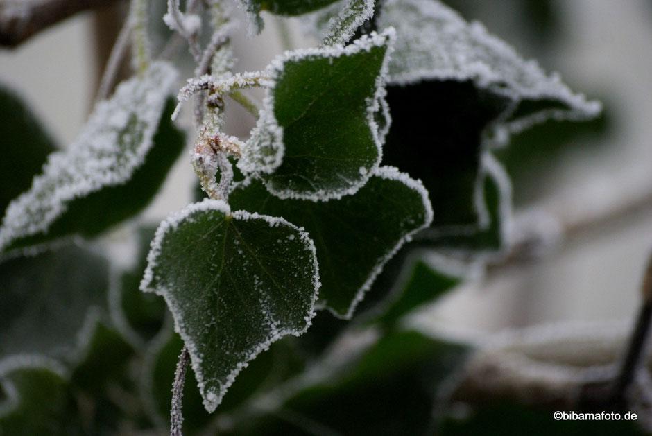 Eiszeit im Land ...