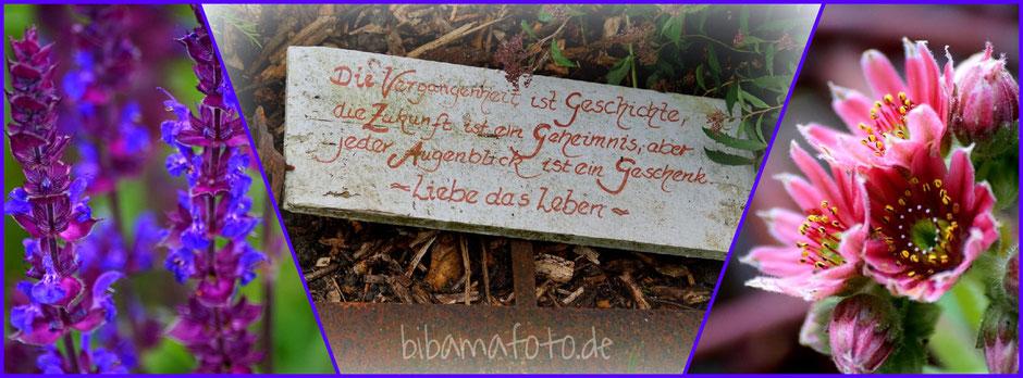 Offener Garten ... Denkerhof in den Reußenkögen
