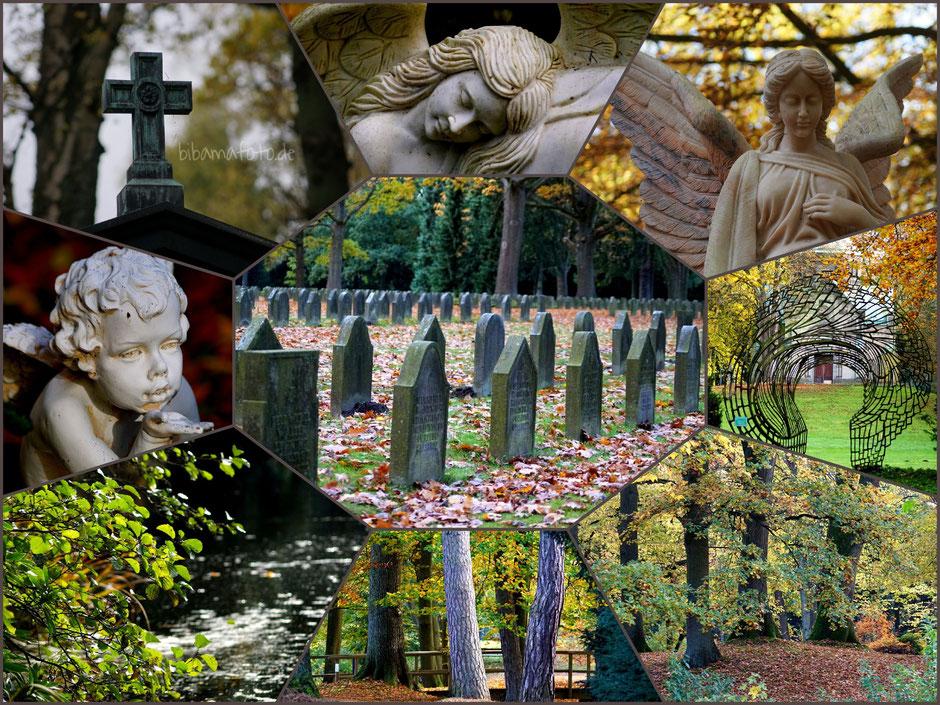 ... mit der Fotosafari unterwegs ... Ohlsdorfer Friedhof in Hamburg. Der größte Parkfriedhof der Welt!