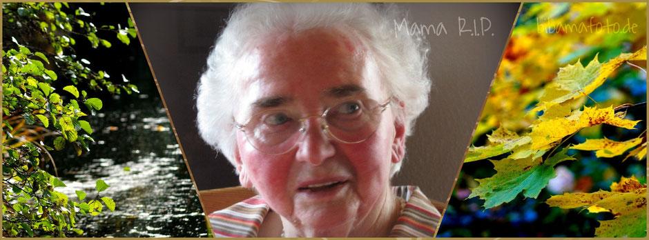 Sie wollte nie im November sterben ... sie konnte es sich nicht aussuchen. R.I.P Unvergessen ... ich hab Dich lieb, Mama.