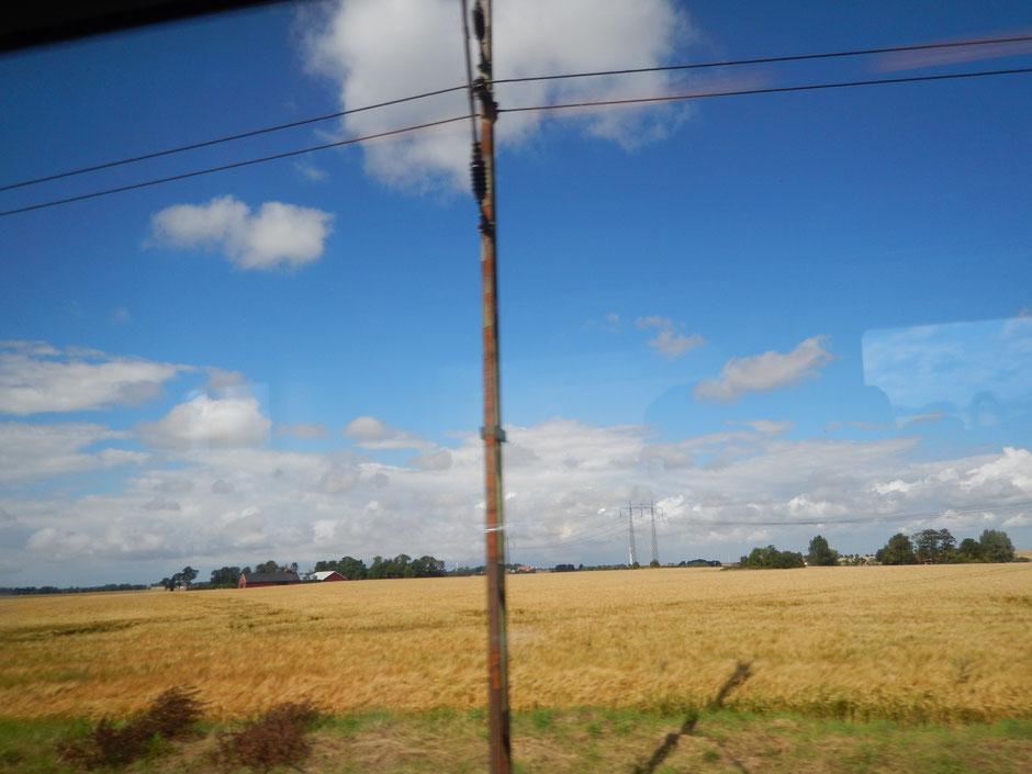 Im Zug nach Trelleborg...