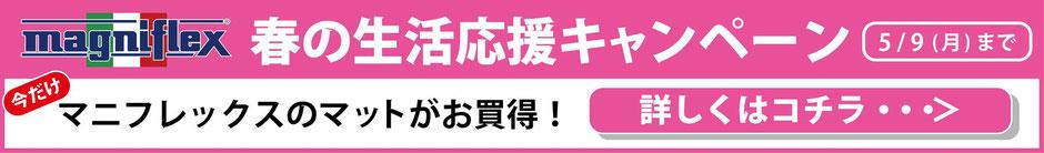 春の生活応援キャンペーン / マニフレックスの品揃えが 1番の マニステージ福岡