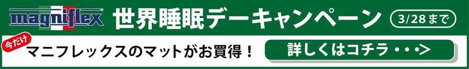 マニフレックス 世界睡眠デーキャンペーン / マニフレックスの品揃えが 1番の マニステージ福岡